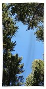 Forest Treetops Beach Towel