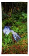 Forest  Water Stream. Benmore Botanic Garden Beach Towel