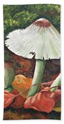 Forest Wonders Beach Towel
