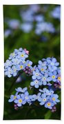Forget Me Not 1 Beach Towel