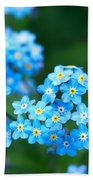 Forget -me-not 4 Beach Towel