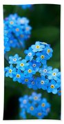 Forget -me-not 5 Beach Sheet