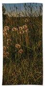 Forgotten World #h6 Beach Towel by Leif Sohlman