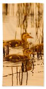 Four Baby Duckies Beach Towel