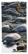 Four Endangered Greenies Beach Towel
