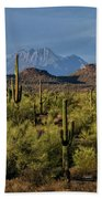 Four Peaks On The Horizon  Beach Towel
