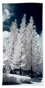 Four Tropical Pines Infrared Beach Towel