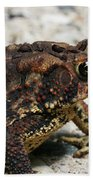Fowler's Toad #2 Beach Towel