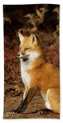 Fox In The Fall Beach Sheet