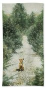 Fox In The Flurries Beach Towel