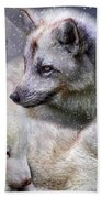 Fox Moods Beach Towel