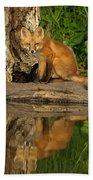 Fox Reflection Beach Towel