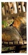 Foxes In A Chair Beach Towel