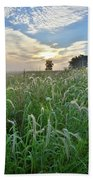 Foxtail Grasses In Glacial Park Beach Towel