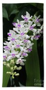 Foxtail Orchid Beach Towel