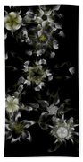 Fractal Floral Pattern Black Beach Towel