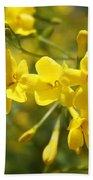 Fragrant Yellow Flowers Of Carolina Jasmine Beach Towel