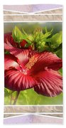 Framed Red Hibiscus Beach Towel