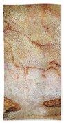 France: Cave Art Beach Towel