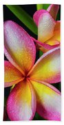 Frangipani After The Rain Beach Towel