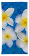 Frangipani Flowers In Water Beach Towel