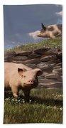 Free Range Pigs Beach Sheet