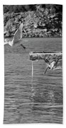 Freedom Is A Seagull Name Black And White Beach Towel