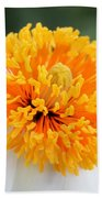 Frenzy Of Stamens Beach Towel