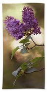 Fresh Violet Lilac Flowers Beach Towel