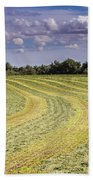 Freshly Mown Hay  Beach Towel