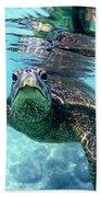 friendly Hawaiian sea turtle  Beach Towel