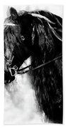 Friesian Horse Beauty Beach Towel