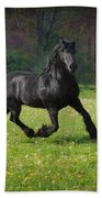Friesian Power Beach Towel