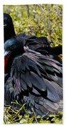 Frigatebirds In Love Beach Towel