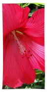 Frilly Red Hibiscus Beach Towel