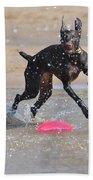 Frisbee On The Beach Beach Towel