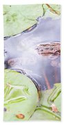Frog And Lily Pads Beach Towel
