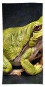 Frog - Id 16236-105016-7750 Beach Towel