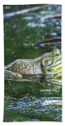 Frog In A Pond Beach Towel