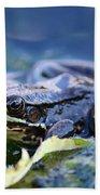 Frog In Water Beach Towel