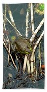 Frog On A Stick Beach Towel