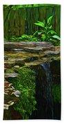 Froggy 11318 Beach Towel