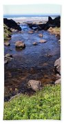 From The Mountains To The Sea Beach Towel
