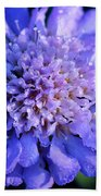 Frosted Blue Pincushion Flower Beach Towel