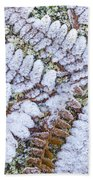 Frosted Fern Beach Towel