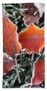 Frosted Leaves Beach Towel