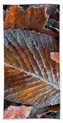 Frosted Painted Leaves Beach Towel