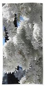 Frosted Pine Needles Beach Towel