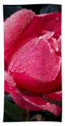 Frosted Rose Beach Towel