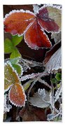 Frosted Strawberries Beach Towel